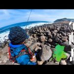 夢だった超一級の島への旅。憧れの離島で4泊5日の釣り旅をしました【壱岐島編】