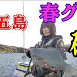 【五島列島・平島で磯釣り!春磯のオフシーズンでもグレ好釣果】
