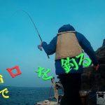 こんな竿と仕掛けで島山島でクロ釣りしてみた!! = IN五島列島 =