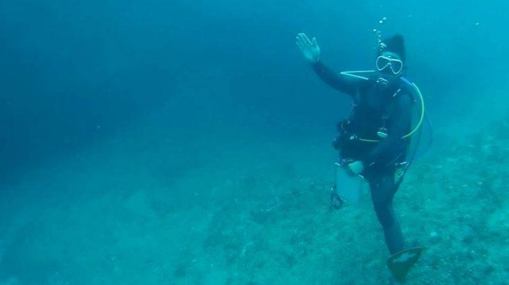 島山島 インヤマ水中撮影 都丸×DayTrip