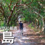 【人間より牛が多い島】大自然「黒島」でのサイクリングが最高すぎた!〜石垣島旅行を半日だけ離島に使ってみませんか?〜