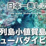 日本一美しい海へ!五島列島小値賀島スキューバダイビングで観たお魚パラダイスとは?イサキ、キビナゴの魚群に、それにあの高級魚が、、、【ゲストハウス御縁】