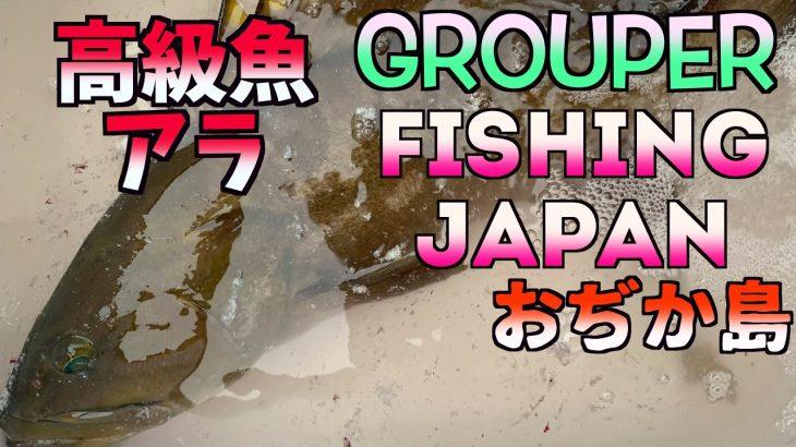 釣りの聖地五島列島小値賀島泳がせ釣りでアラ、青物、ヒラメを釣りに来たら、一投目でまさかの大物が、、、、【地方移住、離島移住】